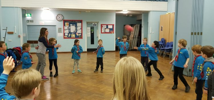 Beavers learn about Disability